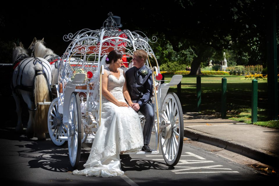 wedding-dress-bride-sitting-groom-horse-cinderella-carriage-infocus-phtography